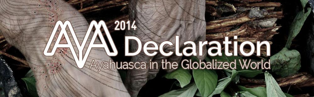 AYA2014 Declaration