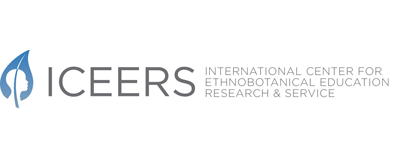 ICEERS logo