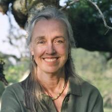 Kathleen Harrison, MA